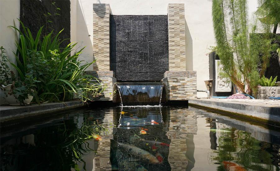 Koi pond outside the house