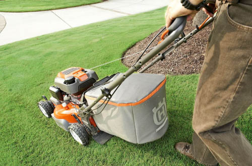 Can a lawn mower spread fungus?