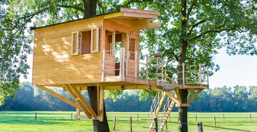 Wooden tree house in oak tree and meadow